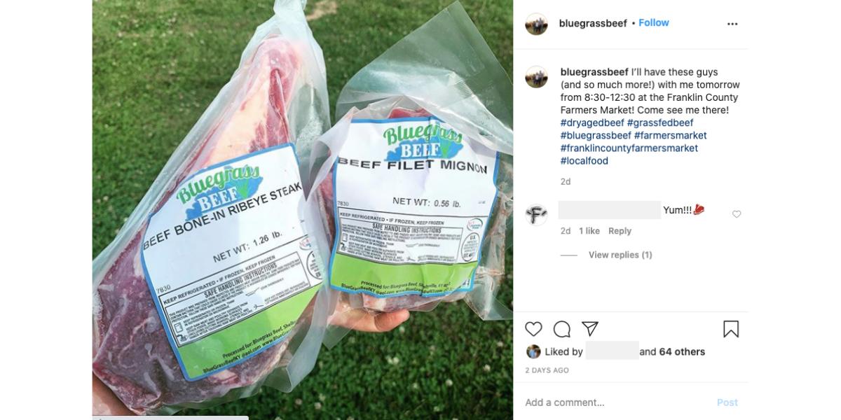 Blog Feature Image_Bluegrass Instagram